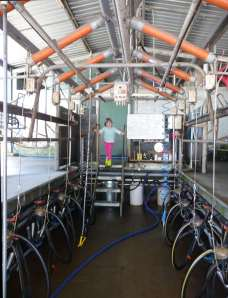 Inside the dairy