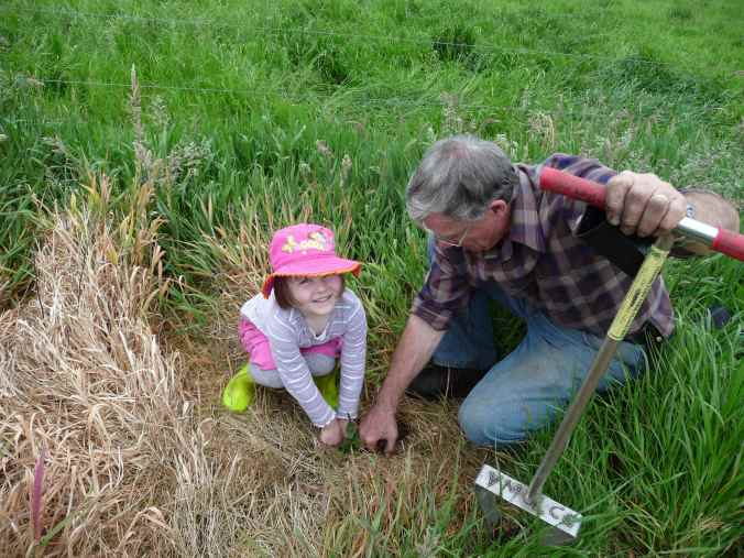 Bruce shows Zoe how to plant trees
