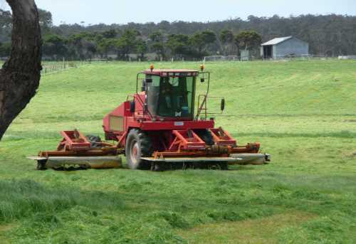 Silage mower