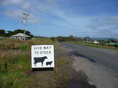 Give Way to Stock