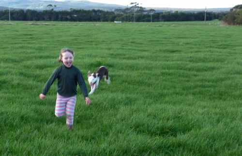 Zoe and Patch in the paddock