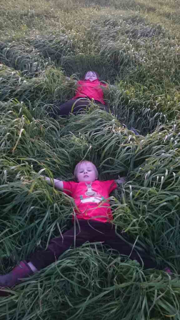 GrassAngels